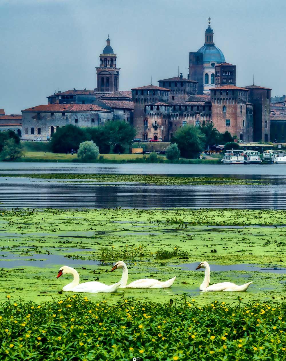 Mantova sull'acqua - Foto Franco Lanfredi