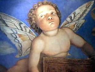 Guide Turistiche Putto con ali di farfalla, Camera degli Sposi, Palazzo Ducale, Mantova